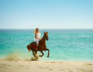 Horse Riding on Beach Cape Verde